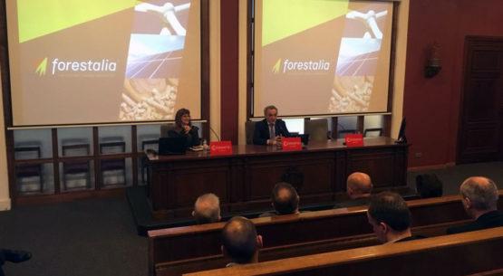Aragón es la comunidad más beneficiada por las inversiones en energía renovables de Forestalia
