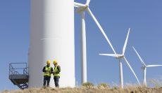 Empresas socias de Clenar se adjudican megavatios en la subasta de energías renovables